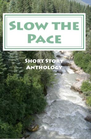 slowthepace450